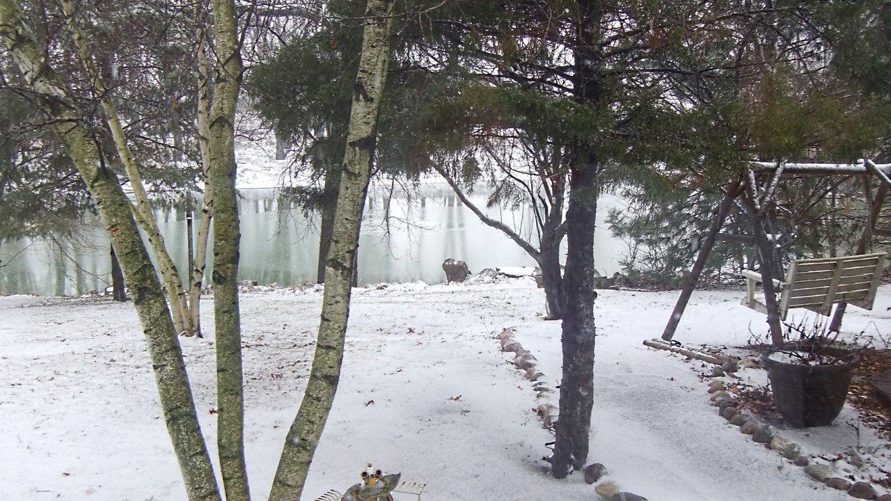 Winter Snowfall (2) by Thomas Peace 2013