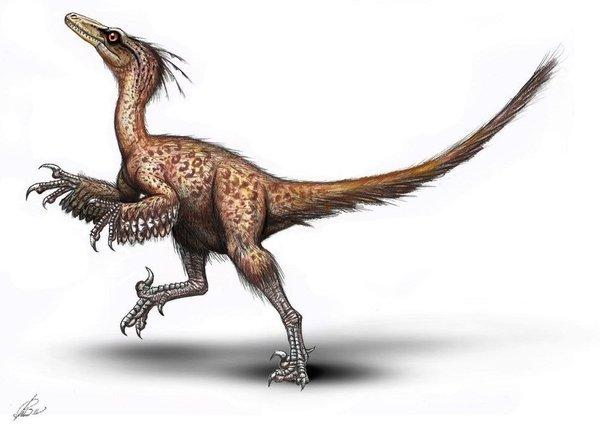 Image of Troodon, by MALvit of Deviant Art...