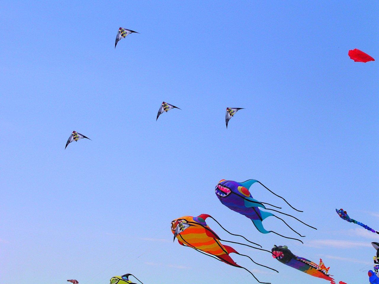 Grand Haven Michigan Kite Festival (2) by Thomas Peace 2013