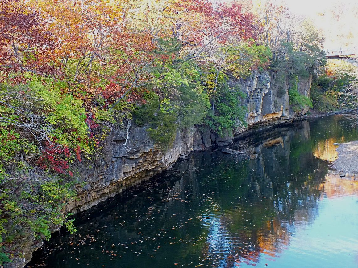 Fall by the Creek. Photo by Thomas Peace 2014