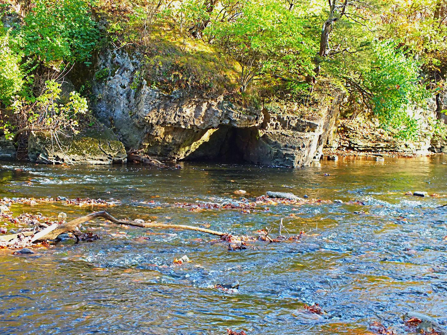 Local Creek.  Photo by Thomas Peace 2014