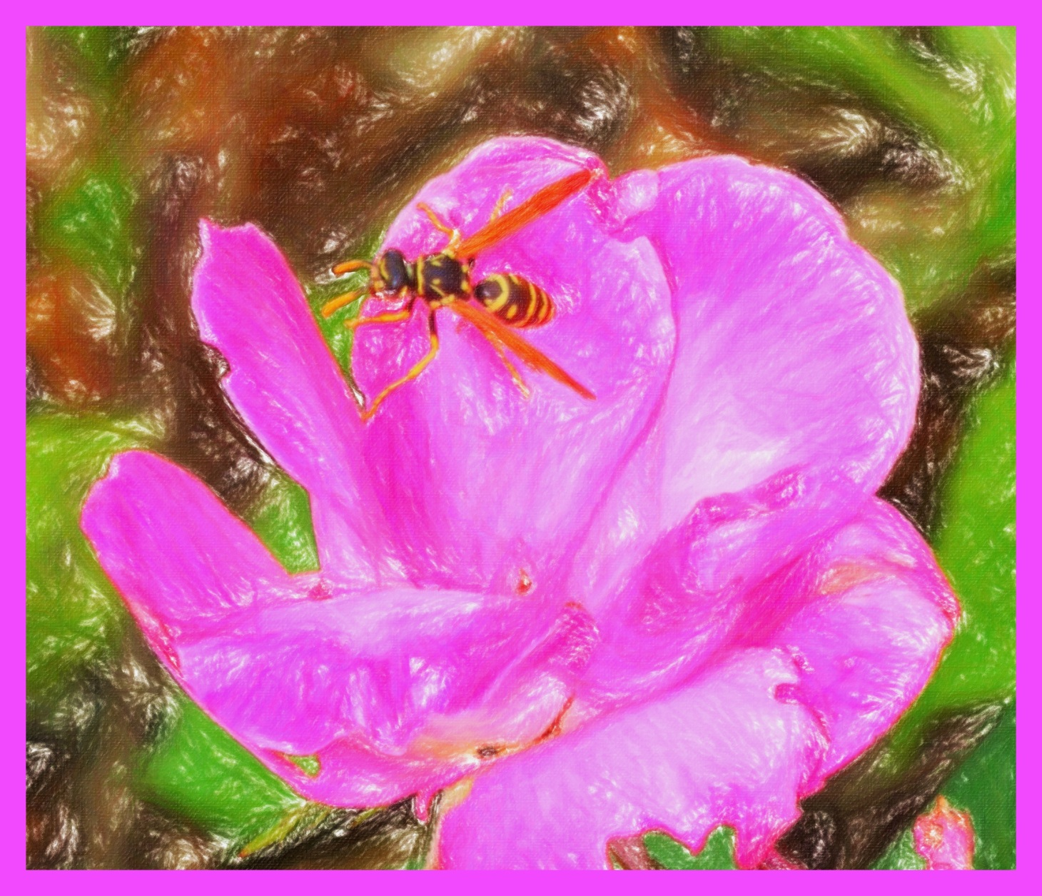 Wasp in Flower. (2) Photo by Thomas Peace c. 2015