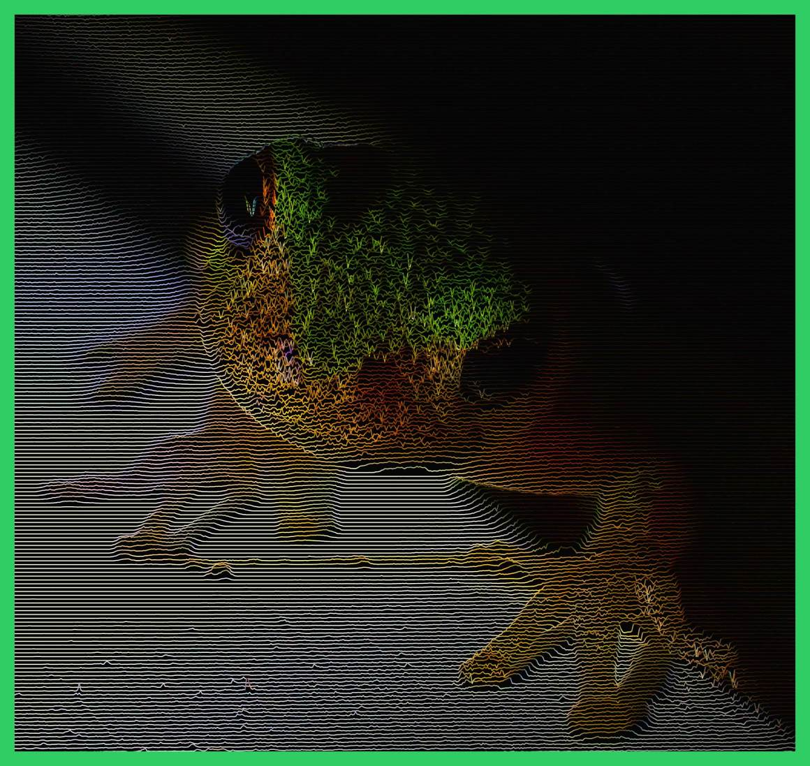 Tree Frog climbing around the porch (2). Photo by Thomas Peace c. 2015